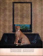 1963 A Photo Cheetah Style Print Retro Style