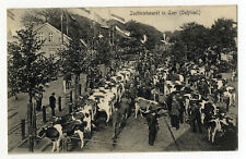AK Leer Ostfriesland Zuchtviehmarkt Vieh Markt 1910
