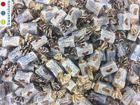 De Bron Caribbean Cream Toffees Zuckerfrei 1 kg