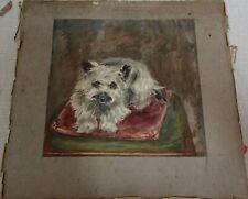 Antikes Bild Gemälde Aquarell Hund(Malteser) ,um 1892 sign.