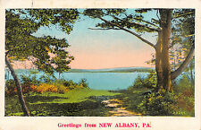 NEW ALBANY PENNSYLVANIA GREETINGS FROM POSTCARD c1933