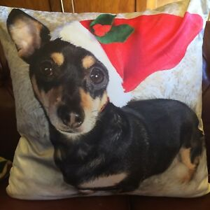 PEPPER CHRISTMAS SCATTER CUSHION ( 18 X 18 INCHES )