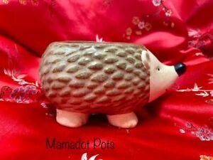 Hedgehog Ceramic Planter Pot