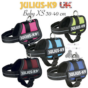 Julius-K9 Dog Powerharness Baby XS fully adjustable chest & belly straps 30-40cm