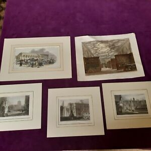 Mixed Set of Antique Lithographs of Cambridge with mounts