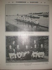 Printed photo Harvard University Rowing team 1906