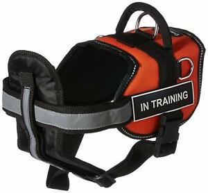 "DT Works Orange ""IN TRAINING"" MEDIUM Harness w/ Chest Padding & Padded Leash"