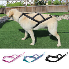 Pet Dog Weight Pulling Sledding Harness X Back Training Padded Vest Medium Large