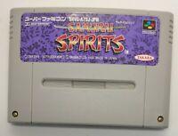 Samurai Spirits for Nintendo Super Famicom NTSC-J Japanese TESTED