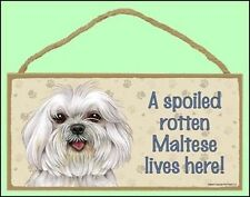 "A Spoiled Rotten Maltese (v2) Lives Here 10"" x  5"" Dog Sign"