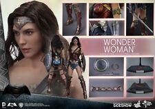 Hot Toys Batman v Superman Wonder Woman 1:6 Scale Figure Gal Gadot Brand New
