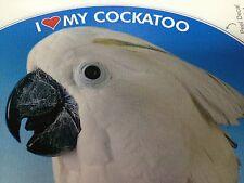 Umbrella Cockatoo Parrot Exotic Bird Vinyl Decal Bumper Sticker