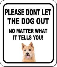 Please Dont Let The Dog Out Norwich Terrier Metal Aluminum Composite Sign