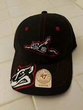 RICHMOND FLYING SQUIRRELS Baseball Youth Hat '47 Nutzy MiLB NWT Cap Va