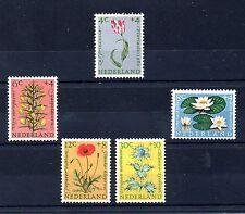 Holanda Flores serie del año 1960 (AV-887)