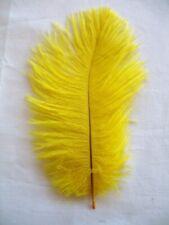 Yellow Mini Ostrich Feathers 5-8 Inch per Dozen