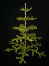 Antique goose feather tree / 100 cm (31,5 inches) tall (# 11622)