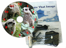 DIY CD Clock Kit , Meerkats
