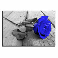 Rose Floral Single Canvas Wall Art Picture Print 8