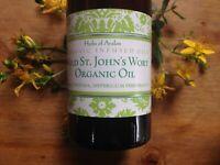 St John's Wort Oil Organic Infused Hypericum perforatum nerve muscle pain burns