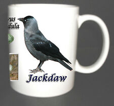 JACKDAW GARDEN BIRD MUG LIMITED EDITION CHRISTMAS GIFT