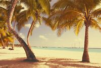 Tropical Beach - Beautiful Landscape Home Wall Art Large Poster & Canvas Picture