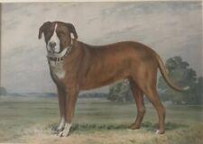 Antique St. Bernard Dog Chromolith Framed & Matted By Alexander Pope Jr. 1878