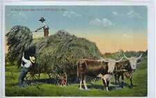 (Gw773-449) Farm Scene, OLD ORCHARD, Maine, USA 1910 G-VG