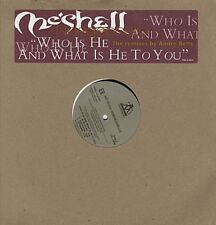 Meshell Ndegeocello Who Is He And What Is He DJ USA 12""