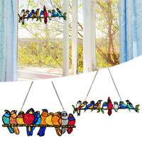 Bird Species Stained Pendant Window Hanging Suncatcher Acrylic Birds Hanging