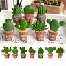Plants Cactus Flower Removable Fridge Magnet Sticker Home Kitchen Decoration--