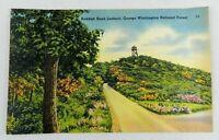 Vintage Postcard Reddish Knob Lookout George Washington National Forest Color