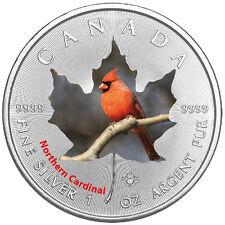 1 Oz Silber Maple Leaf Farbe 2017  Canadian Birds Northern Cardinal Vögel Kanada