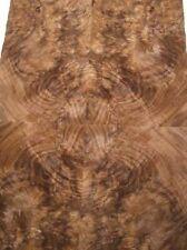 Nußbaum Wurzelholz Furnier Maserholz X 38x20/22cm 23 Blätter
