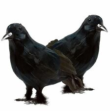 Prextex Realistic Looking Halloween Decoration Birds Black Feathered Crows 2pk