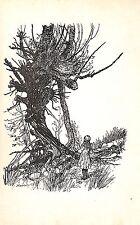 Arthur Rackham.1930.Alice in Wonderland.Fantasy.Antique print.Cat print