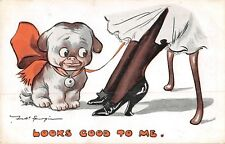 POSTCARD  COMIC  DOG  Related   Nylons  Lady  Ankle