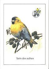 FDC 2665 - Oiseau Buzin sur gravure format A4 !