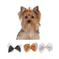 Dog Grooming Bow - Aria - Canister of 100 bows - Halloween Polka Dot - 2 1/4""