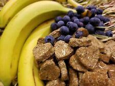 Banana Blueberry & Oaten Hay Cookie Treats for Pet Bunny Rabbit