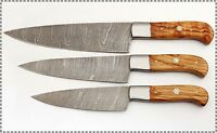 CUSTOM MADE DAMASCUS BLADE KITCHEN KNIFE 3 Pc's SET 1002-OL
