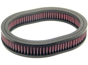K&N Filters E-2920 Air Filter Fits 76-82 310 F10