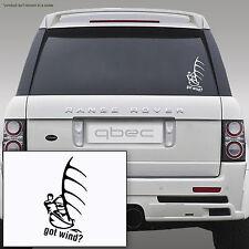 WINDSURFING Mistral JP Starboard HiFly Fanatic-car sticker 19cmH x10cmW