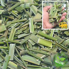 Organic Pure Dehydration Dried Pandan Leaf Quality Ceylon Spices FreeShipping