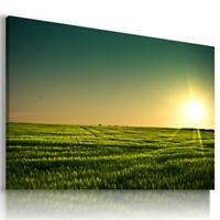 GREEN FIELD SUNRISE Perfect View Canvas Wall Art Picture Large L561 X MATAGA