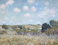 Meadow Alfred Sisley Landscape Print on CANVAS Giclee Poster Repro Small 8x10