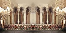 Arches Pillars 20'x10' CP Backdrop Computer printed Scenic Background CM-5399SS