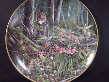Kaiser W. Germany Forest Surprises DEERHEAD ORCHID Squirrel  Ltd Ed Plate