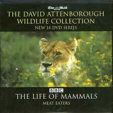 David Attenborough - THE LIFE OF MAMMALS - Meat Eaters - ***DVD***