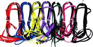 Horse Bridle Full/ cob size, PVC,Biothane, new, Blue,pink,black,purple Green Red